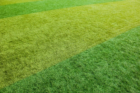 green grass texture from a soccer field. Stock Photo - 13271751