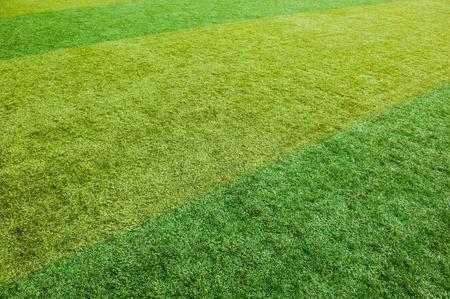 green grass texture from a soccer field. Stock Photo - 13271751