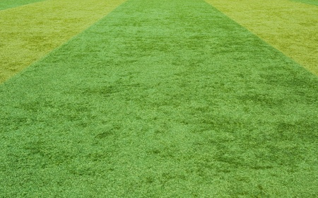 green grass texture from a soccer field. Stock Photo - 13271742