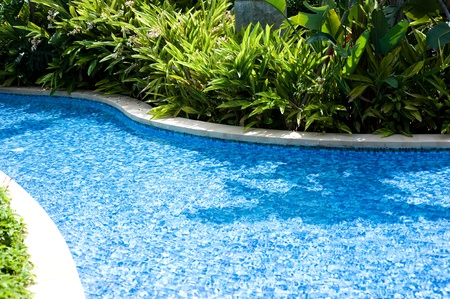 Swimming pool surrounded by lush tropical plants. Stock Photo - 13344632