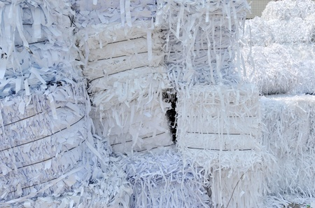 shredder: stack of shredded paper at recycling plant.