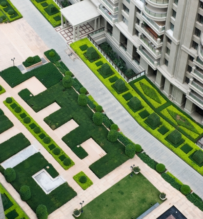 top view of path in garden, and surrounded by green plants.
