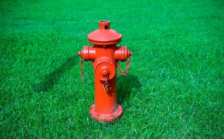 borne fontaine: Bouche d'incendie rouge sur le vert.