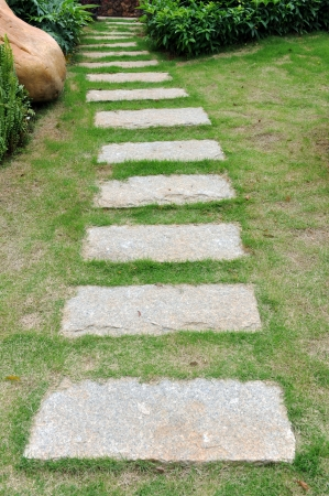 curve stone path in garden, and surrounded by green grass.