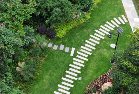 landscaped: top view of stone path in garden.