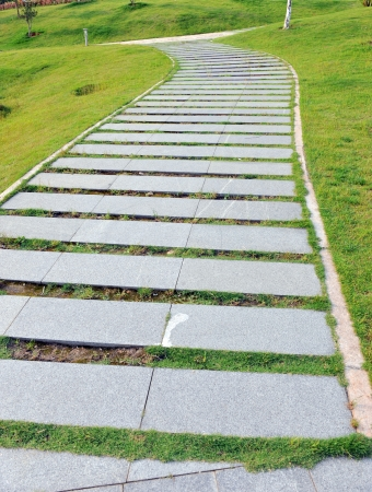 curve stone path in garden, and surrounded by green grass.  photo