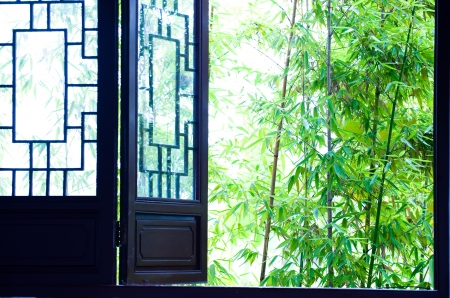 green bamboo beside Chinese wooden windows.