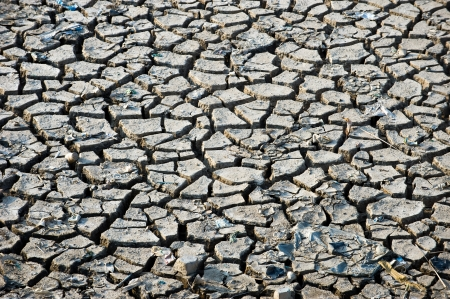fissures: Abstract gray cracked texture. metaphoric for climate change and global warming.  Stock Photo