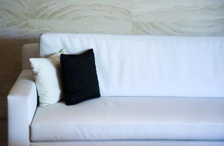 Two decorative pillows on a contemporary sofa.   photo