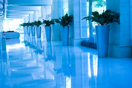 commodious: blue tone of long hotel corridor with potted plants and windows.  Editorial