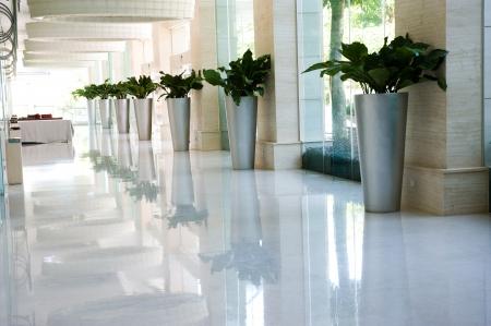 통로: 화분에 심은 식물과 창문이 긴 호텔 복도.