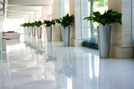 long hotel corridor with potted plants and windows.