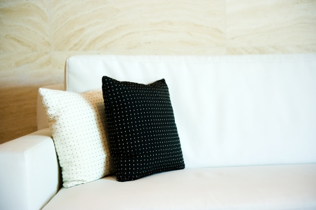 Two decorative pillows on a contemporary sofa.   photo