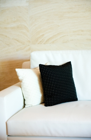 Two decorative pillows on a contemporary sofa. Stock Photo - 13830872