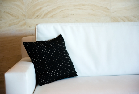black decorative pillow on a contemporary sofa. 