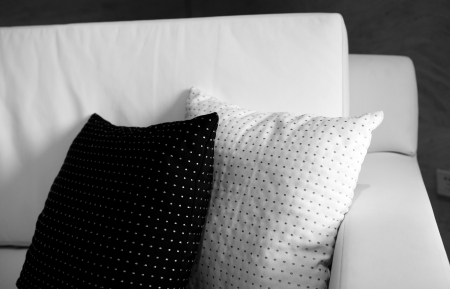 Two decorative pillows on a contemporary sofa. 