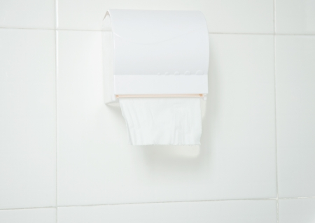Toilet paper hanging on the wall. Stock Photo - 13829489