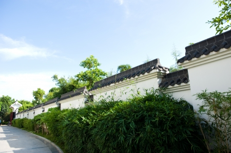 chinese wall: Chinese style garden with trees and plants