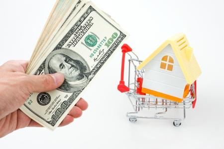 House in shopping cart on a white background. photo