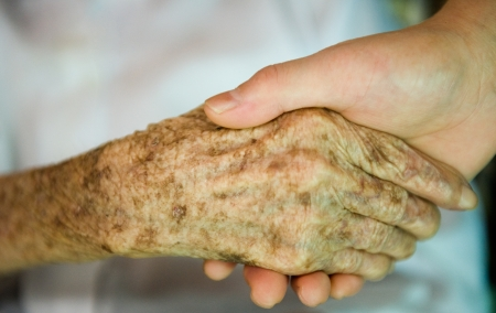 A young hand holding an elderly hand. Stock Photo - 13863751
