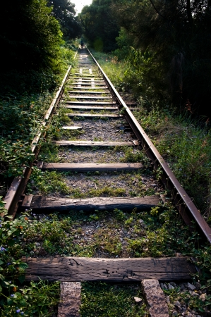 forest railway: Old railway track in the forest, China.