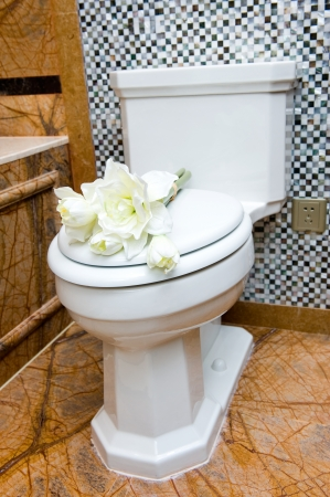 Nice and tidy view of a toilet (bathroom) in a hotel suite.  photo
