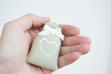 two bag with heart symbol on hand.   photo