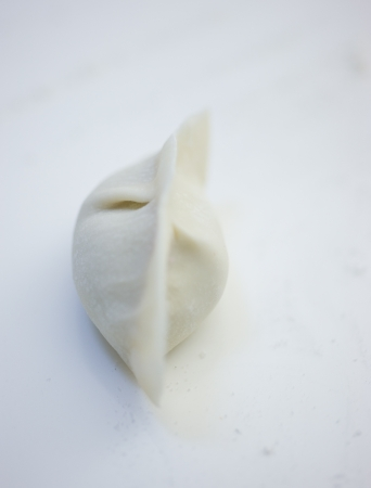 Fresh hand made Chinese dumplings.  Stock Photo - 14048308