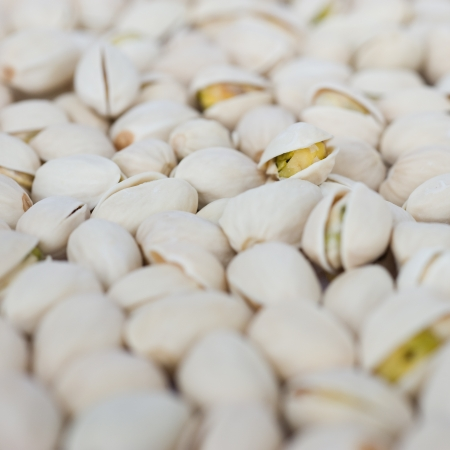 large group of shelled pistachio. photo