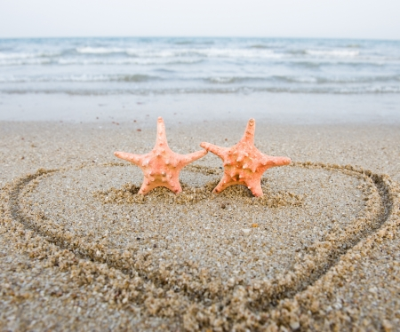 heart in sand: Pair of starfishes on the shore