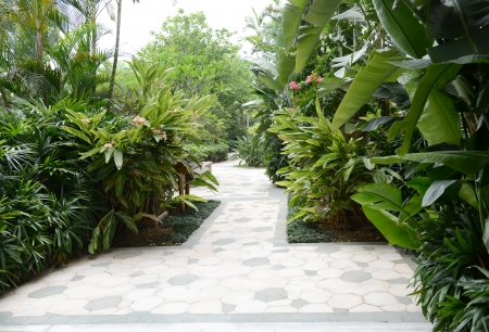 pave: Stone pathway into garden during day time
