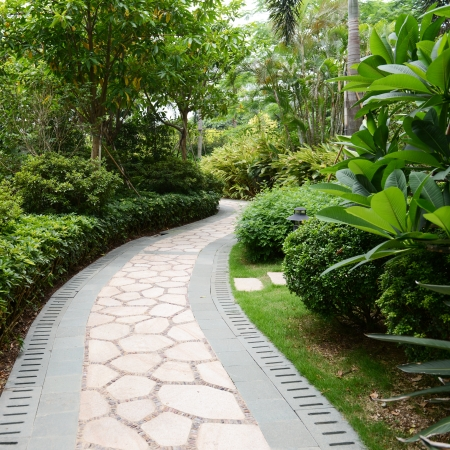 landscaped garden: Stone pathway into garden during day time