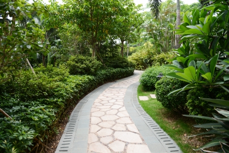 single lane road: Stone pathway into garden during day time