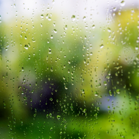 humid: natural water drops on window glass with green background  Stock Photo