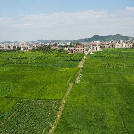 beautiful scene of Chinese village with green farm. photo