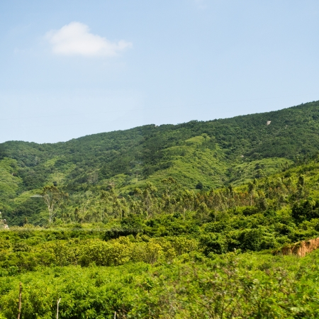 hillsides: A rural landscape of green farm fields and country hillsides.