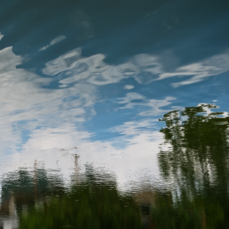 biotope: Blue sky and trees ripple on the lake surface