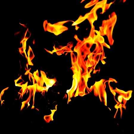 Burning fire flames on a black background. Stock Photo - 17414656