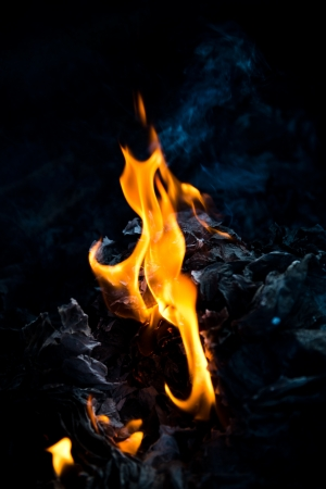 Burning fire flames on a black background. Stock Photo - 17414827