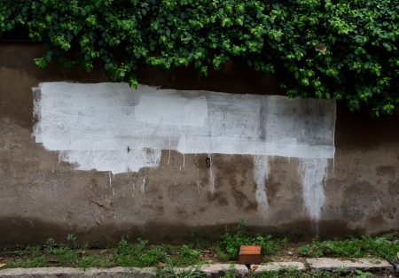 Grunge wall of the old house. Stock Photo - 17572203