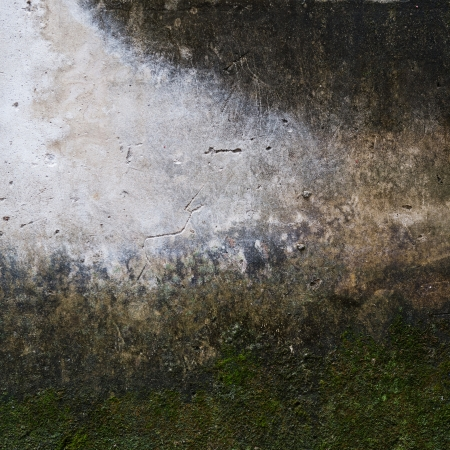 abstract the old grunge concrete wall for background. Stock Photo - 17572265