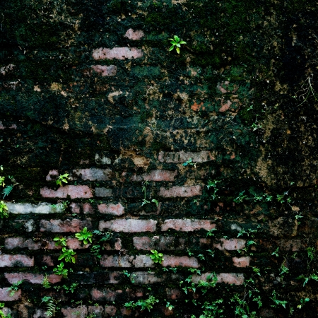 old brick wall texture background. Stock Photo - 17572341
