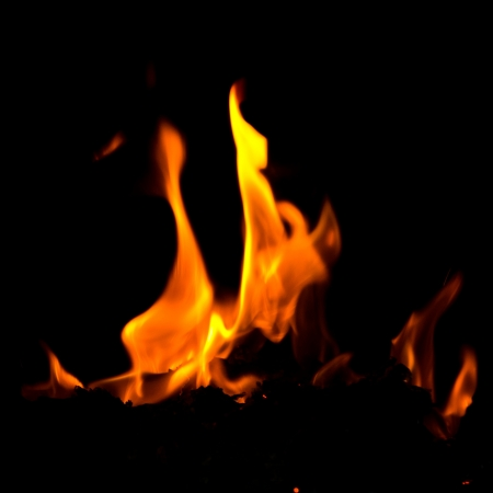Burning fire flames on a black background. Stock Photo - 19278683