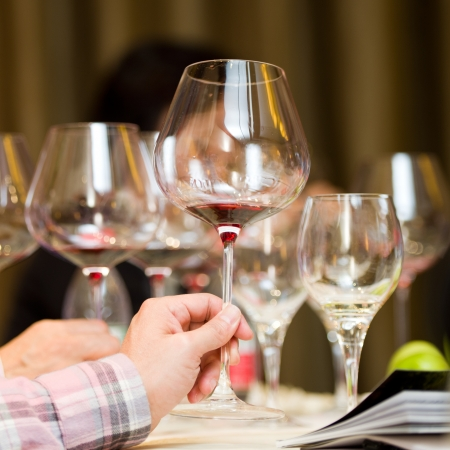 tasting wine: A goblet of wine in hand. Stock Photo