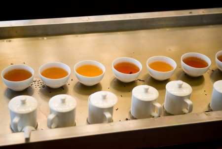 Cups Of Chinese tea in a row. photo
