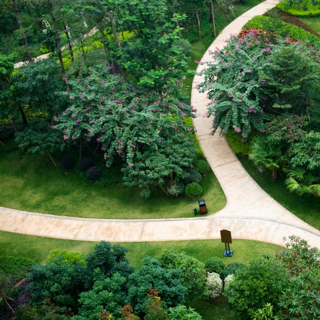 top view of stone path in garden.
