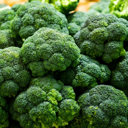 Groep van verse broccoli close-up. Stockfoto