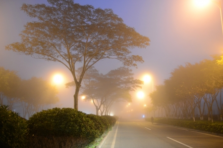 misty street after rain at night. photo