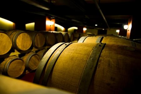 ferment: Wine cellar with many wine barrels.