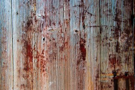 old, grunge wood panels used as background.